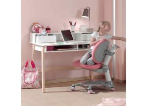 Kiddy Cabinet Desk Room
